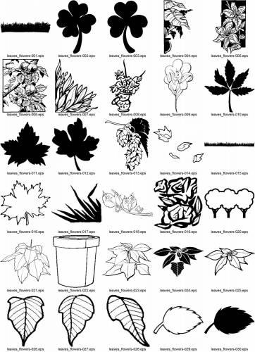 Купить цветы ссылки